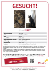 Kater Jimmy aus Rosbach/Rodheim